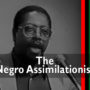 Dangers of the Negro Assimilationist